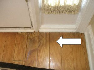 chattanooga home inspector finds mold on the floor